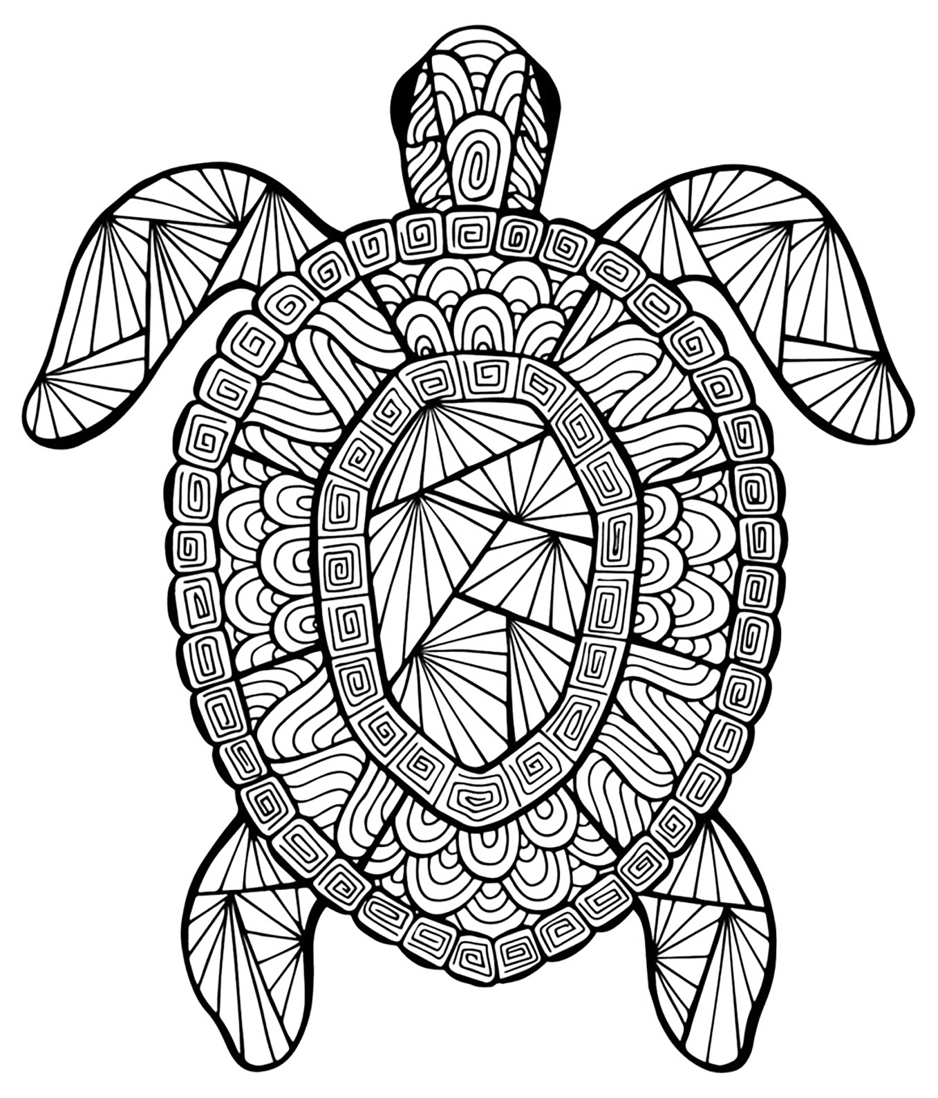 Captivating Coloring Page : Turtle. Turtle