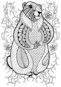 coloring-page-marmot