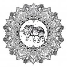 mandala elephant 123rf