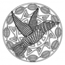 mandala-to-color-animals-free-bird free to print