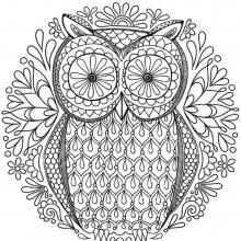 mandala-to-download-magical-owl free to print