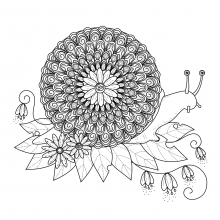 snail-mandala free to print