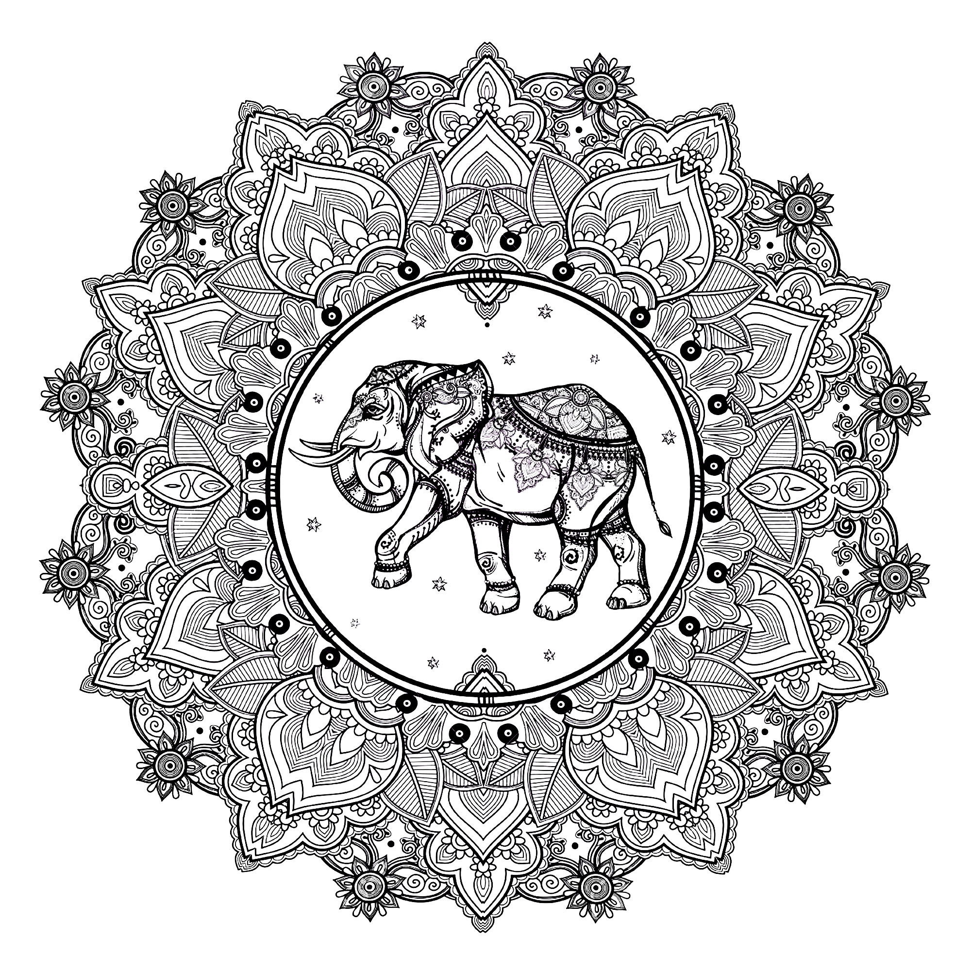 A beautiful Mandala coloring page with an elephant and Indian inspired patterns, of great quality and originality. It's up to you to choose the most appropriate colors.