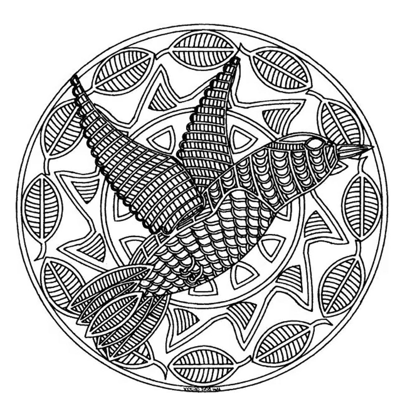 Cute Mandala drawing with a big bird in the middle. Don't hesitate to share the result with us by sending it !