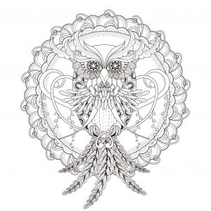 Owl in a magnificent Mandala