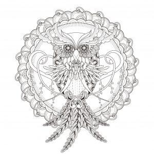 Beautiful Owl in a Mandala by kchung