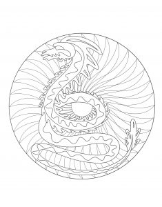 coloring to print mandala dragon 2