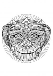 Beautiful Monkey head Mandala