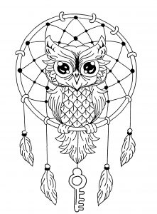 Unique Owl Dreamcatcher Mandala