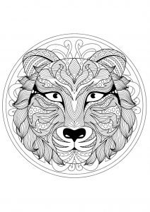Beautiful Tiger head Mandala