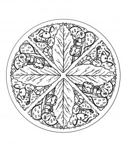 Ant & Leaves Mandala