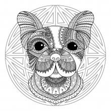 Mandala difficult dog head 2
