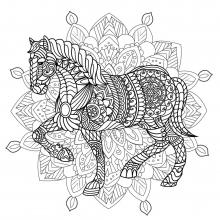 Mandala difficult horse 2