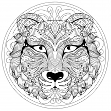 Mandala difficult tiger head 1
