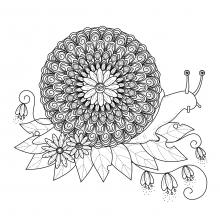 Snail mandala