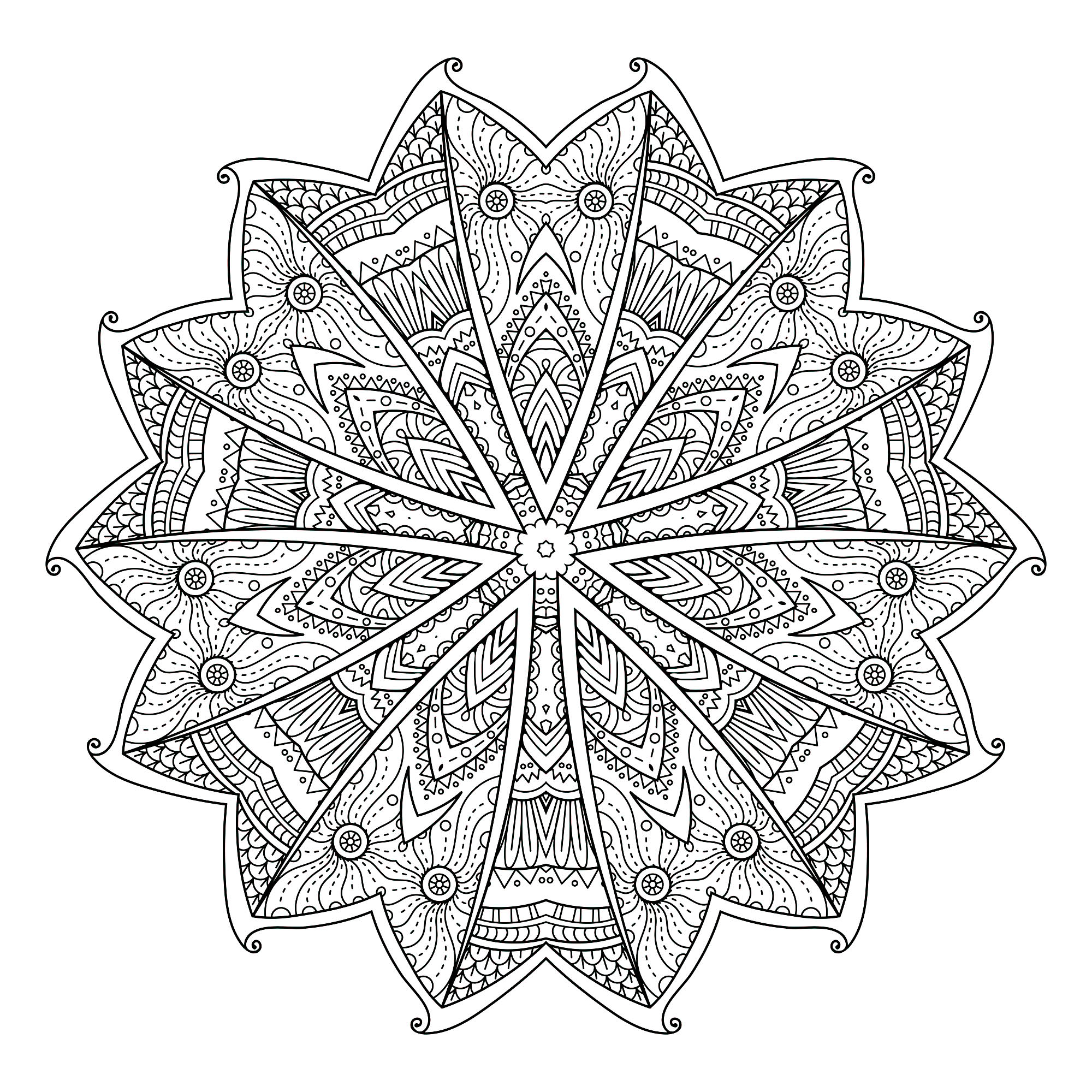 A Mandala quite difficult to color, perfect if you like to color small areas, and if you like various details. The different areas look like butterfly wings.