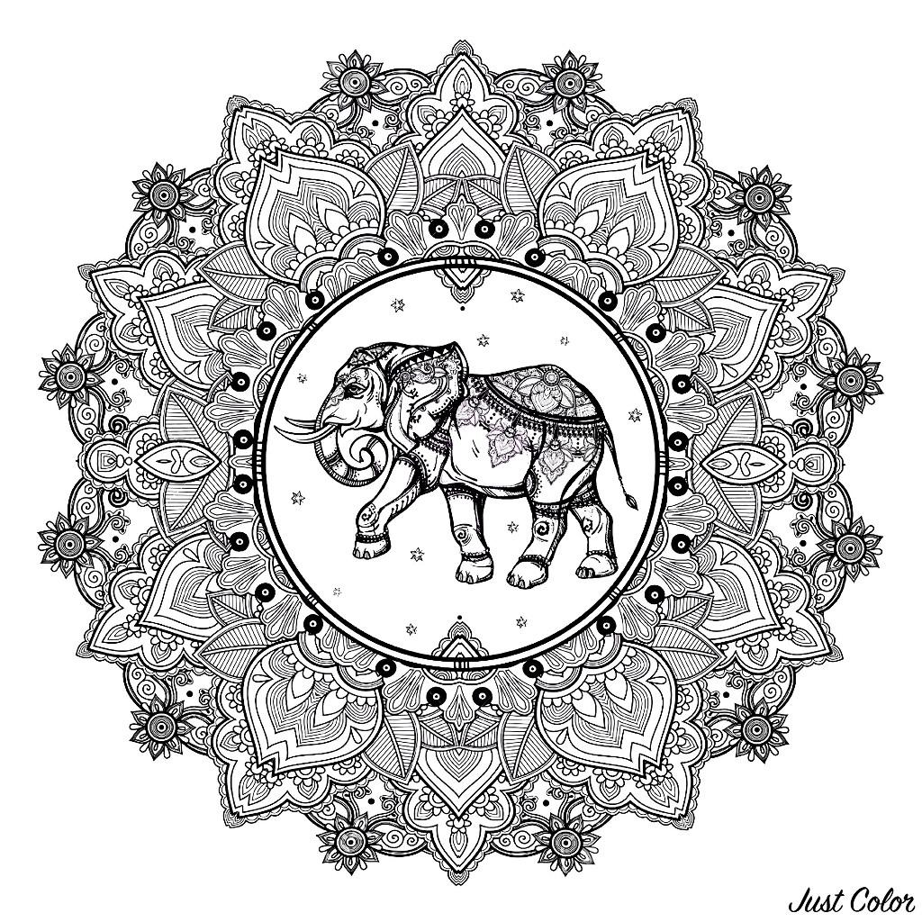 Mandala complex elephant 123rf