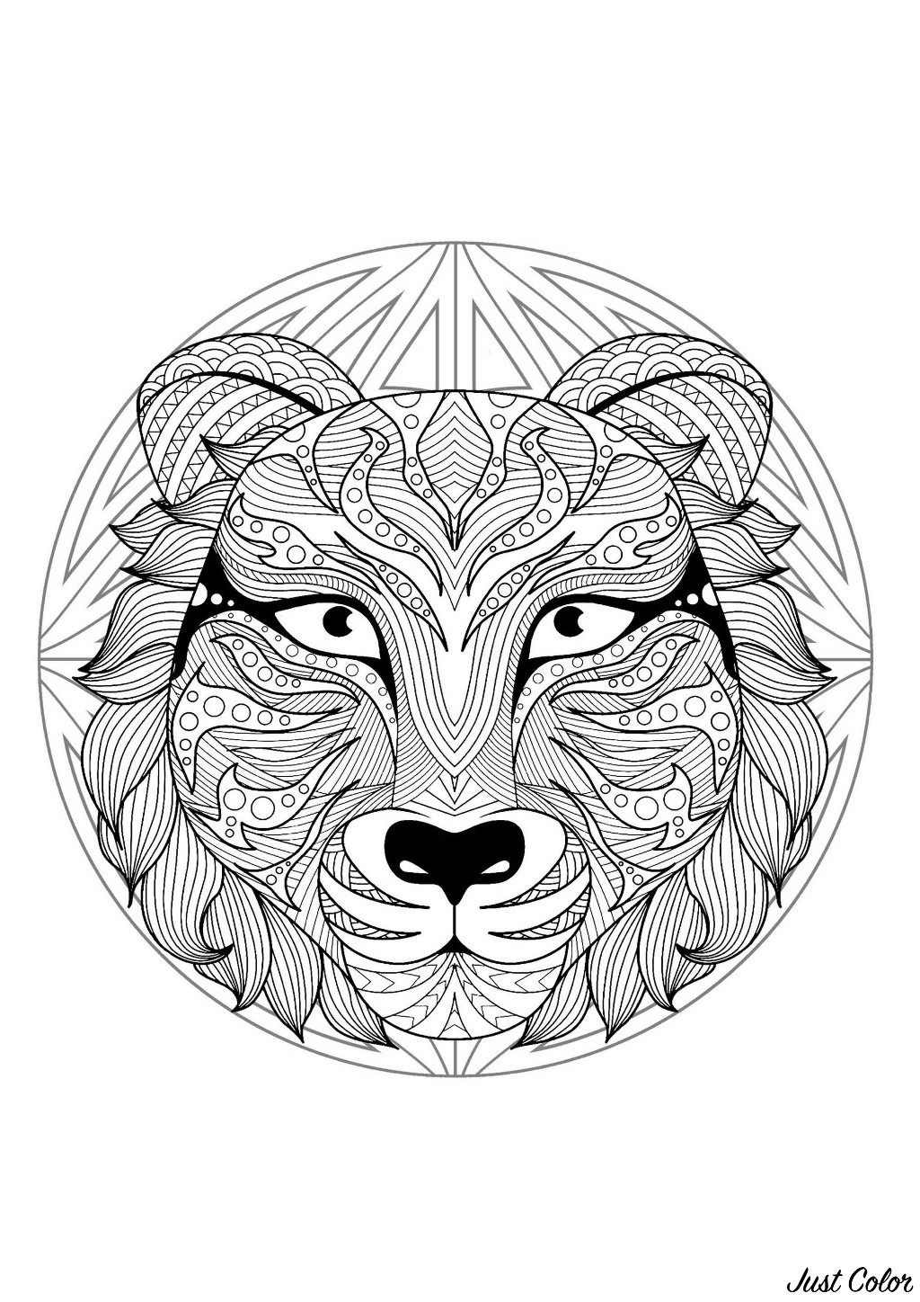 Tiger head in a difficult Mandala. A Mandala quite difficult to color, perfect if you like to color small areas, and if you like various details.