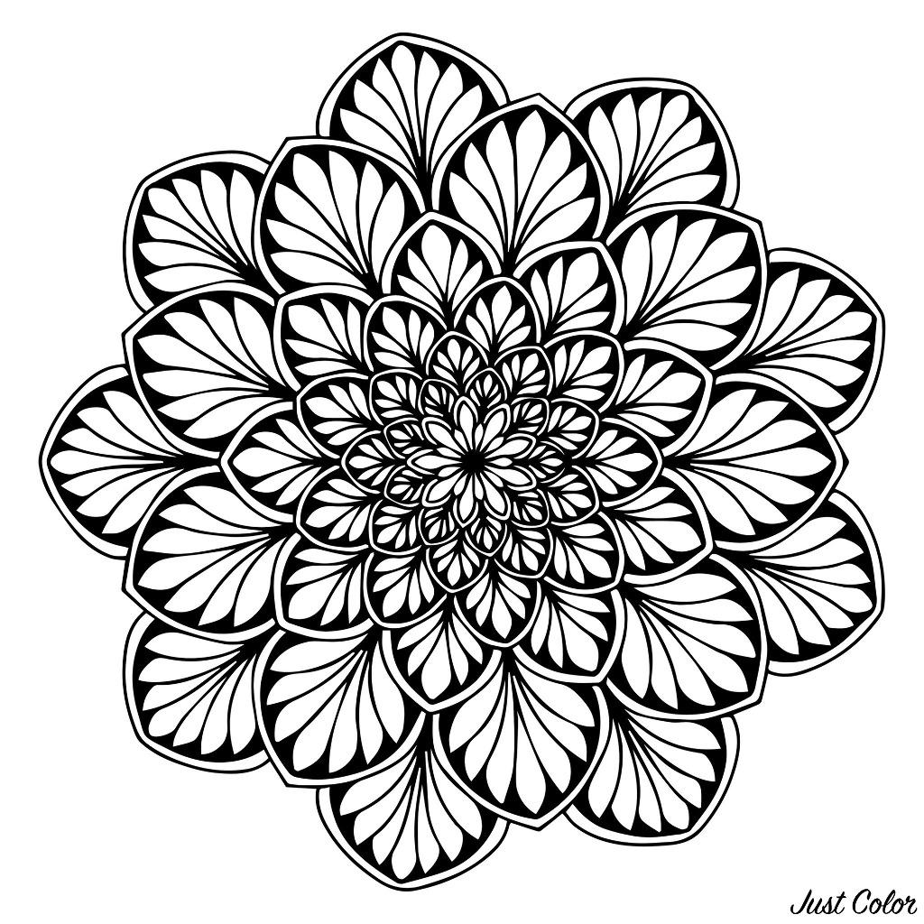 Mandala with symmetric leaves on dark background