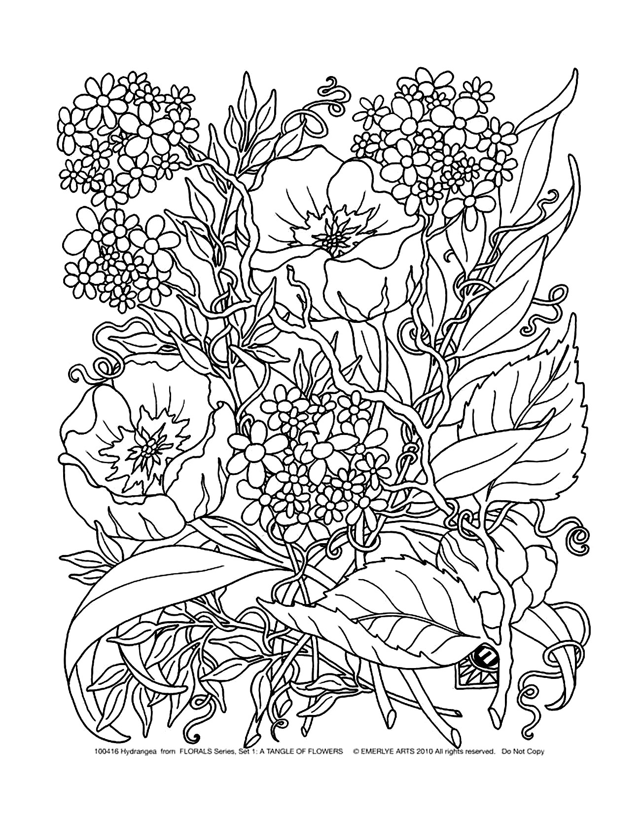 Flowers & vegetation - Coloring Pages for Adults | 1681x1300