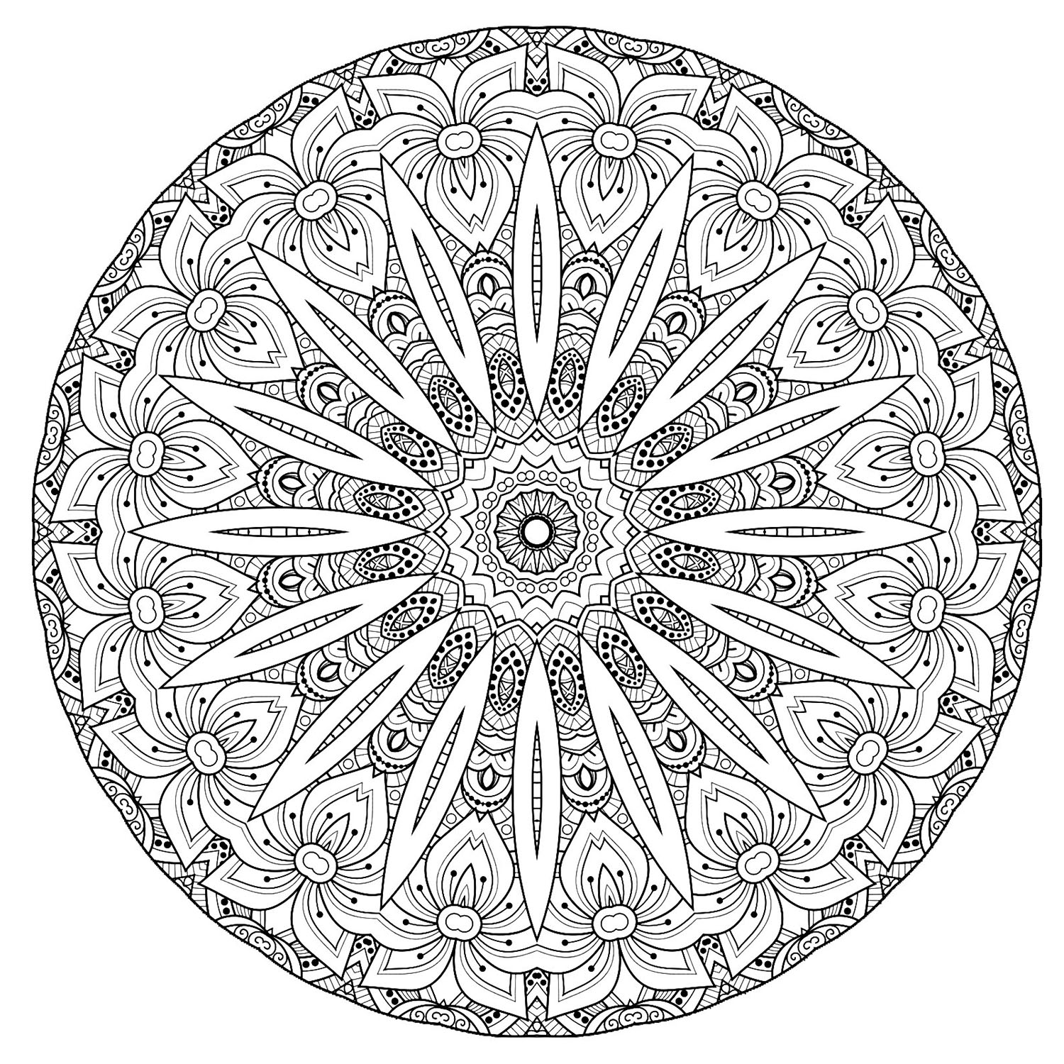 A luxuriant vegetation invades this giant Mandala with complex patterns. Give it life without delay. Do whatever it takes to get rid of any distractions that may interfere with your coloring.