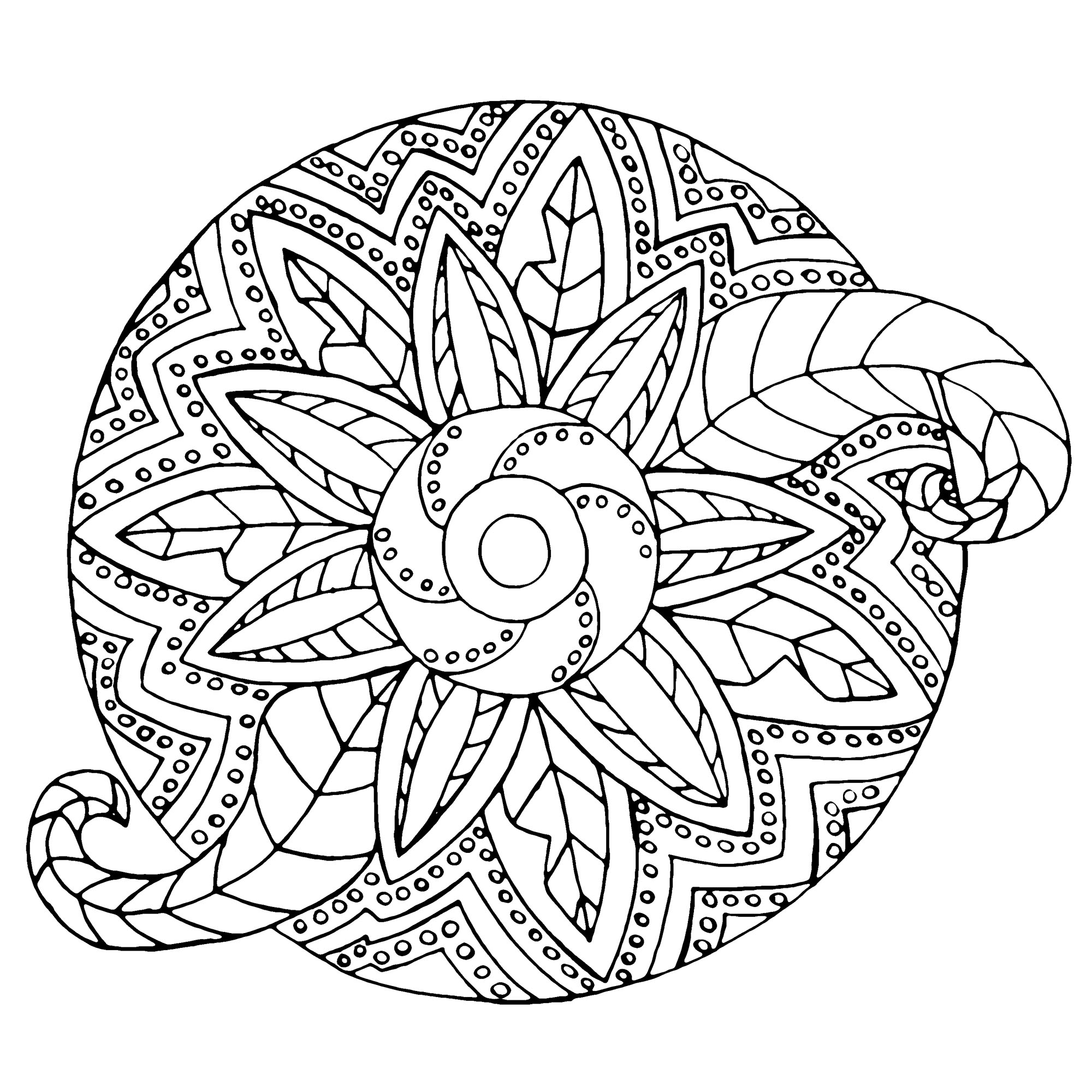 Mandala with both metallic and vegetal shapes. When the plant world fits perfectly into a Mandala drawing, that's what it gives. You can print it for free ! So enjoy !