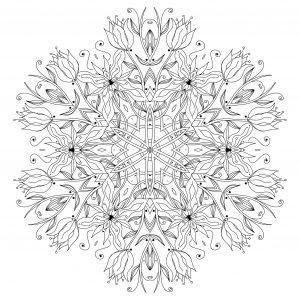 Elegant drawing forming a Mandala