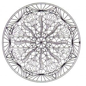 Vegetation in a Mandala