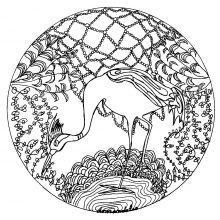 mandala heron