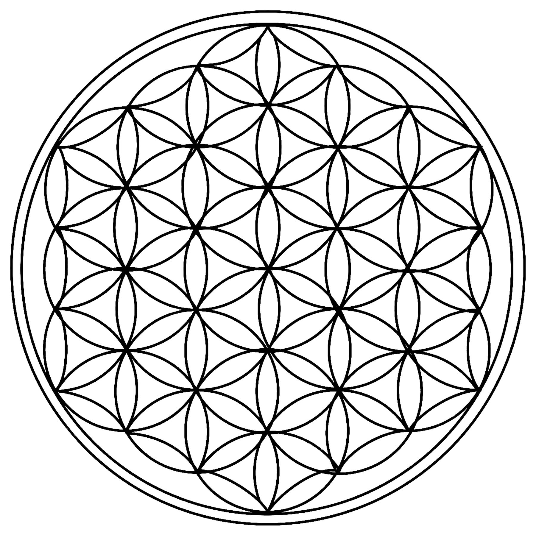 Circles forming a cool Mandala. Details relatively simple to color, for a Mandala coloring page very unique and of high quality.