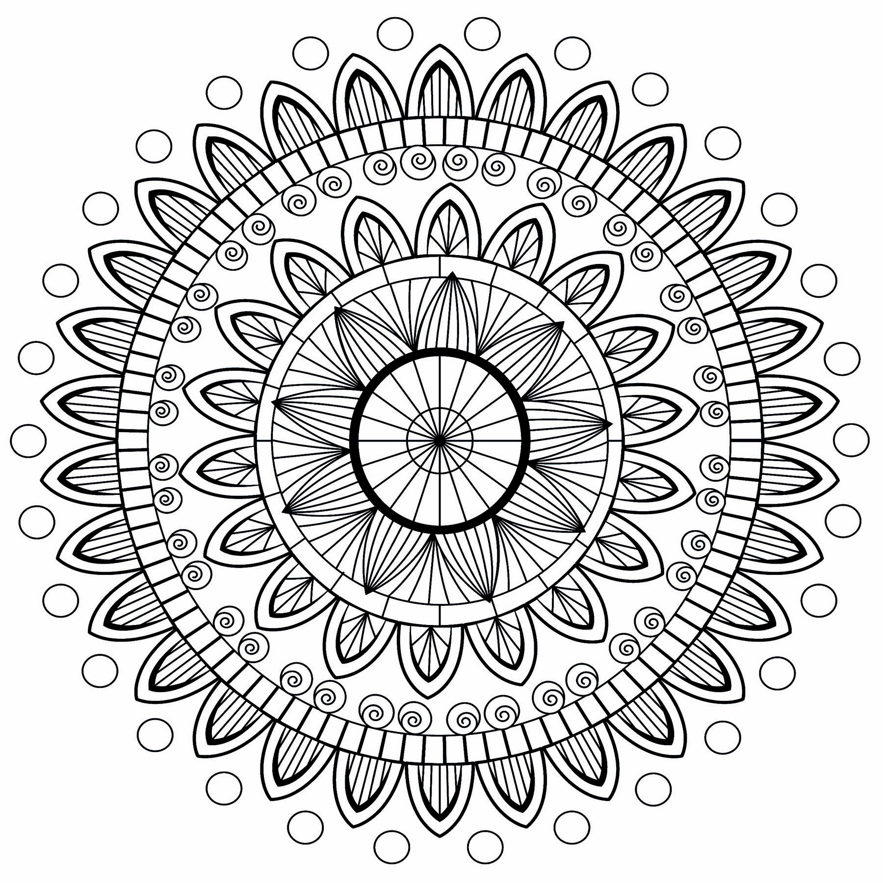 A pretty Mandala with various levels of elegant and regular petals. To color with all your creativity