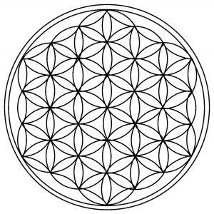 Circles / Rosaces