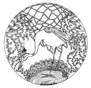 Heron Mandala