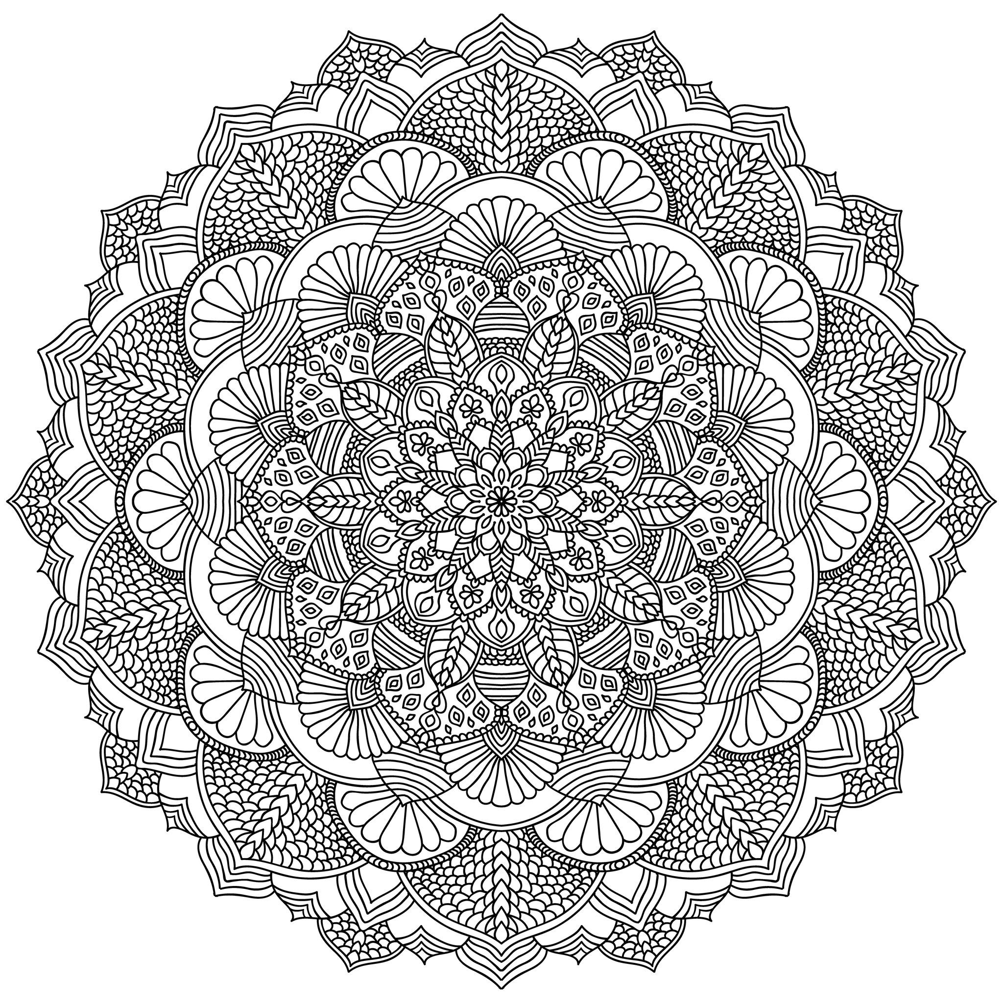 Complex Mandala with vegetal and floral elements - Very ...