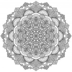 Complex Mandala with vegetal and floral elements